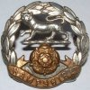 hants regt cap badge2